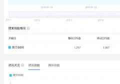 一千多指数的词用文章页上首页【seo案例】